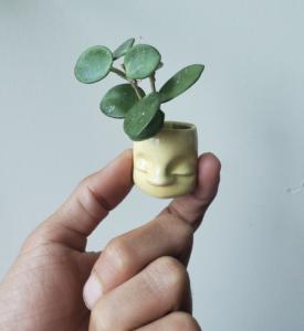 ceramic tiny pot that looks like a head interior design